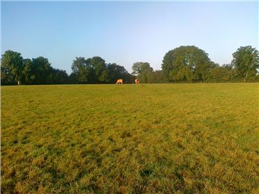 Photo of c. 5 acres, Clonkeen, Portlaoise, Laois