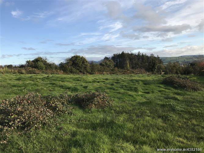 Site at Gortlassobrien, Boher, Ballina, Tipperary
