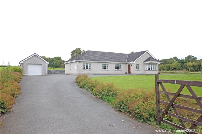 The Willows, Eadestown, Naas, Co. Kildare, W91 F8NH