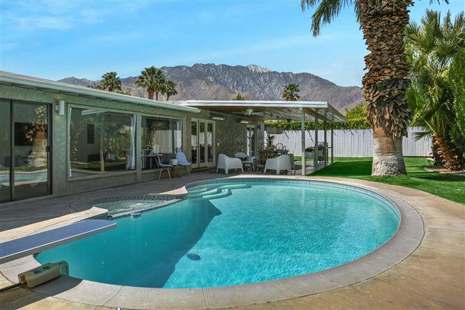 Main image for Petticoat Palm,Palm Springs,California,USA