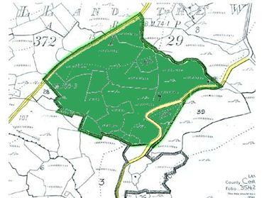 Photo of C20 ACRES FARMLAND, FORESTRY, DEVELOPMENT LAND & C11.5 ACRES HILL, Eyeries, Ardgroom, Cork West