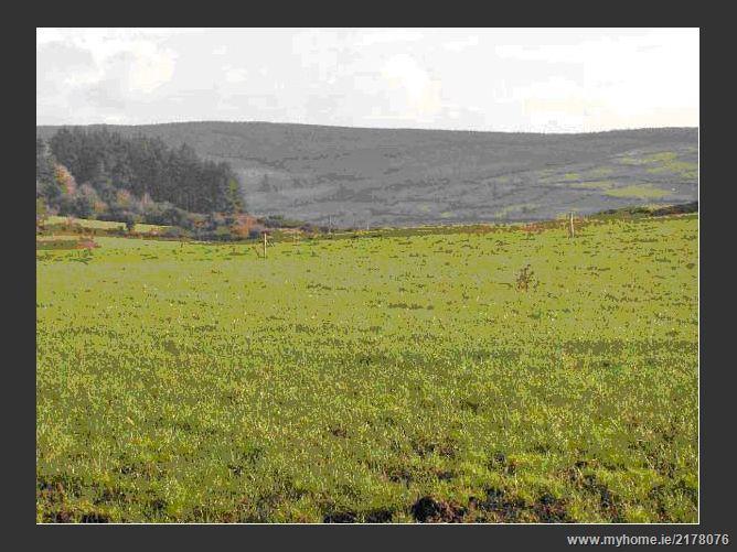 Photo of Derrygrea, Drimoleague, Cork West