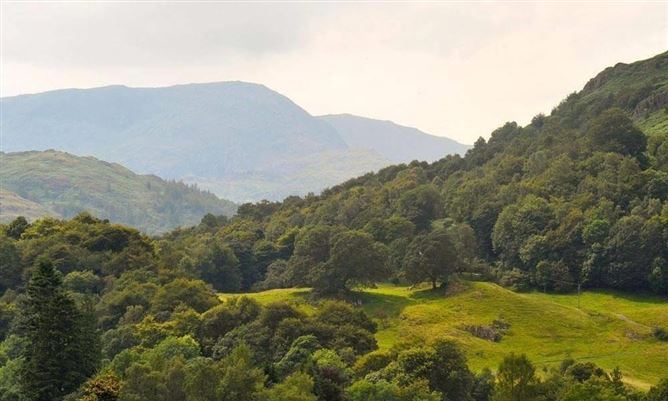 Main image for Fell View Cottage,Lake District National Park, Cumbria, United Kingdom