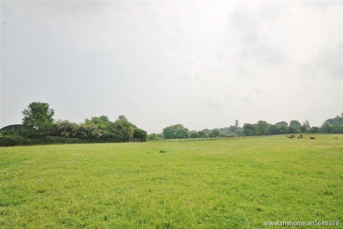 Development Land c. 44.5 acres, Greatconnell, Newbridge, Kildare