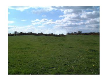 Main image of Lissaviron C. 13.6 Acres , Annestown, Co. Waterford