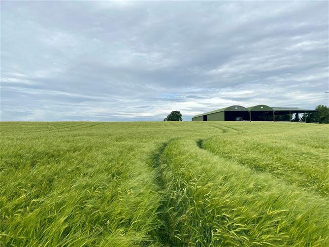 Main image for c. 54.5 Acres, Kilcrow, Athy, Kildare