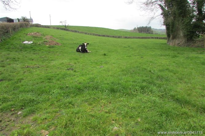 Photo of Barndonagh, Carrickmacross, Monaghan