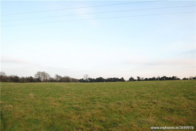 Photo of Approx. 8.25 Acres, Gortnagowna, Roscrea, Co Tipperary