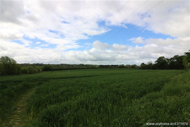 6.8 acres at Greenanstown, Stamullen, Meath