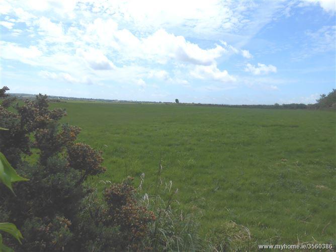 Castleellis, Blackwater, Wexford