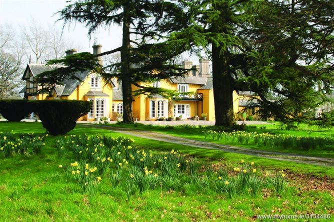 Main image for Martinstown House,Martinstown House, Ballysax, The Curragh,  Kildare
