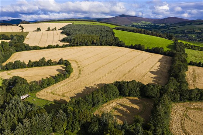 Main image for Lot 3 - North Land, Aughrim, Co. Wicklow, Aughrim, Wicklow