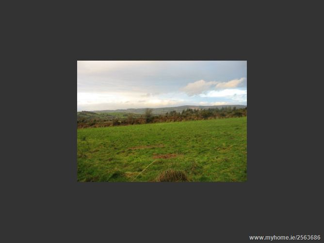Site Development Opportunity - Curraghteskin, Ballymacarbry, Waterford