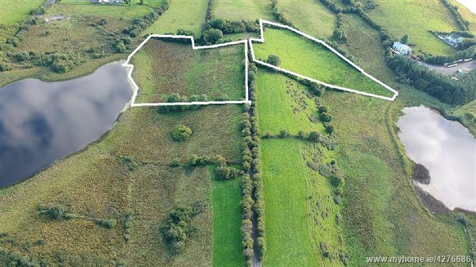 Main image for 6 Acres for Immediate Sale , Ballinvilla , Castlebar, Mayo