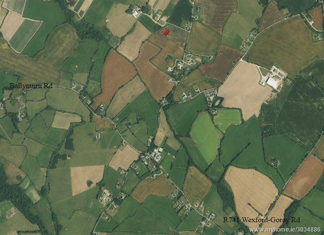 Ballybeg Great, Castle Ellis, Blackwater, Wexford