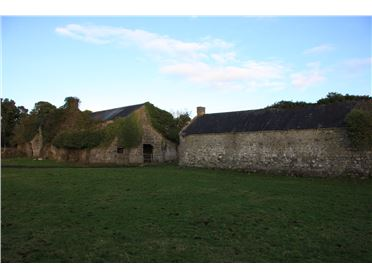 Main image of 28 Acre residiantial Farm, Ballyquirke Lorrha, Nenagh, Tipperary