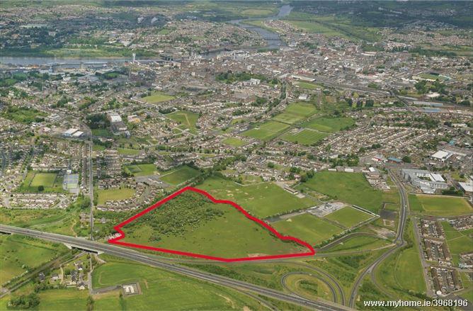 lands at Rosbrien, Co Limerick
