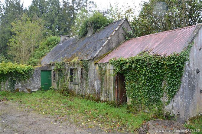 Derrynaheila, Feakle, Clare