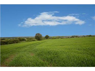 Photo of Kilmurry, Gorey, Wexford