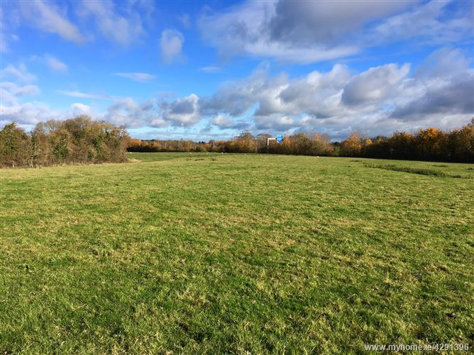 7.65 Acres at Old Kilcullen