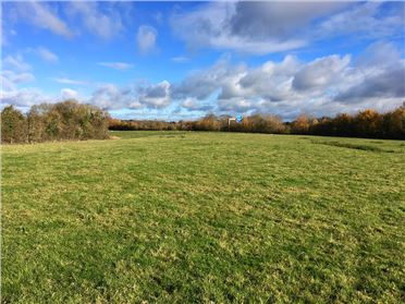 Main image of 7.65 Acres at Old Kilcullen, Kilcullen, Kildare