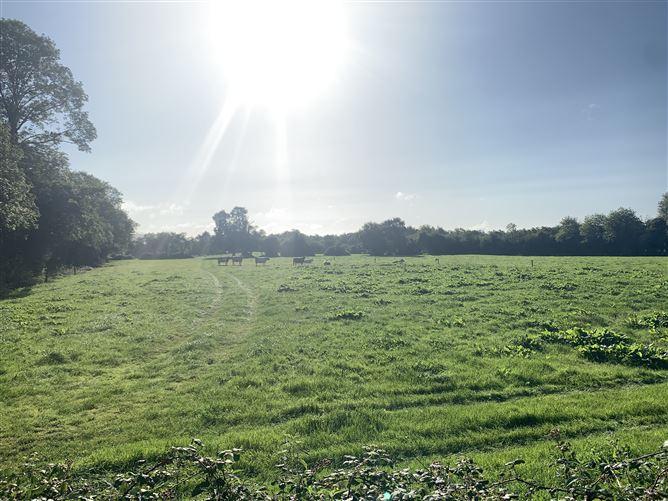Main image for Baunmore , Johnstown, Kilkenny