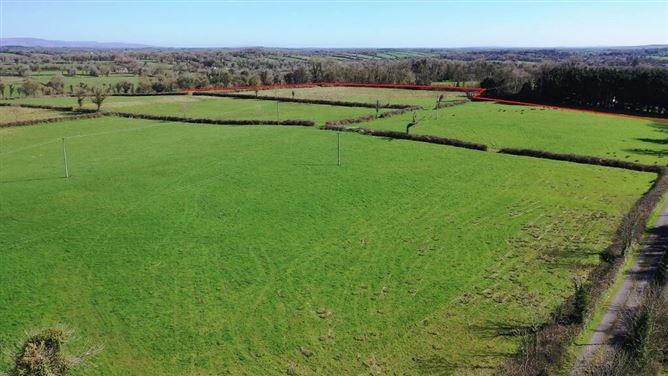 Main image for Tullyloyd, Elphin, Roscommon Town, Co. Roscommon