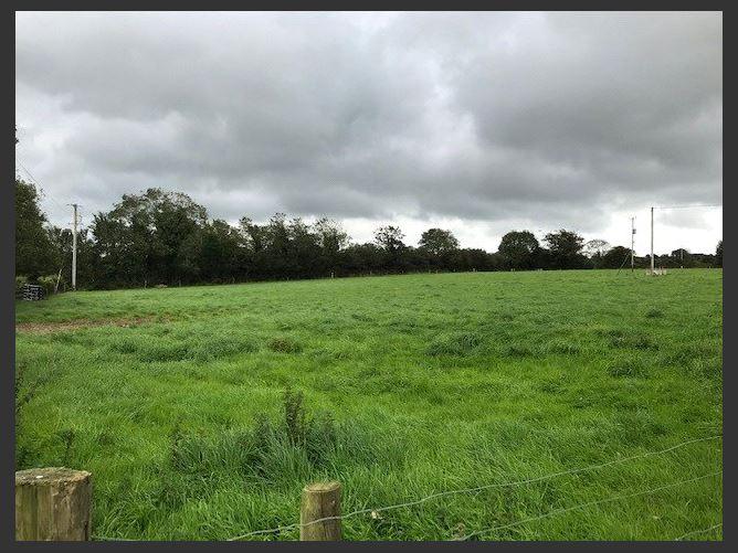 Main image for Killegney, Clonroche, Enniscorthy, Co. Wexford