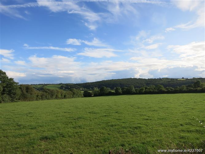 Main image for Ballilogue, The Rower, Kilkenny