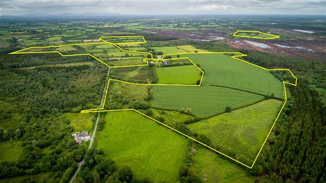 Main image for Derrynaflan, Lurgoe, Killenaule, Tipperary