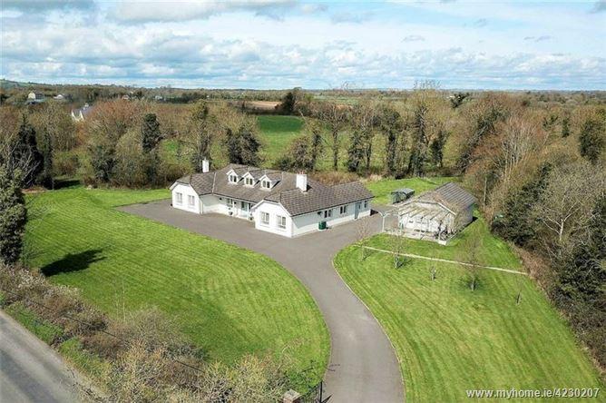 Drinagh, Mountmellick, Co. Laois