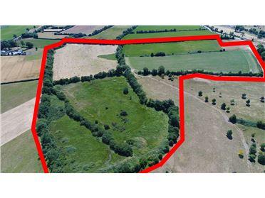 Main image of Leinster Hills, Graiguealug, , Nurney, Carlow