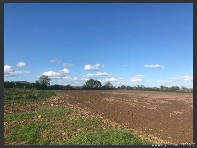 Roadside Lands at Townspark East c. 12 acres, Lismore, Waterford