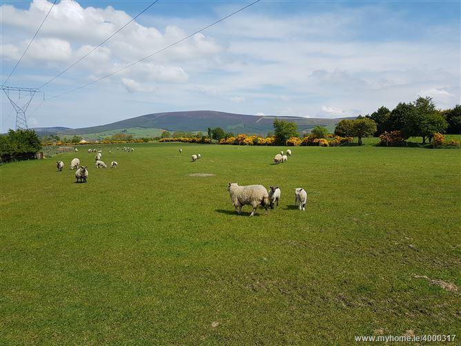 Photo of Blackmoor, Donard, Wicklow