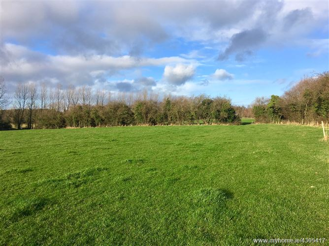 Main image for c. 27 Acres at Great Connell, Newbridge, Kildare