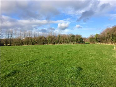 Main image of c. 27 Acres at Great Connell, Newbridge, Kildare