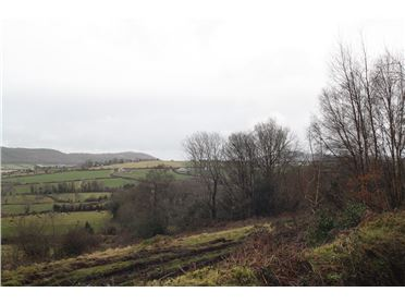 Photo of c1.9 ac sm Site Russellstown, Clonmel, Tipperary