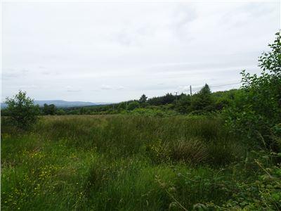 Garranbawn, Murroe, Limerick