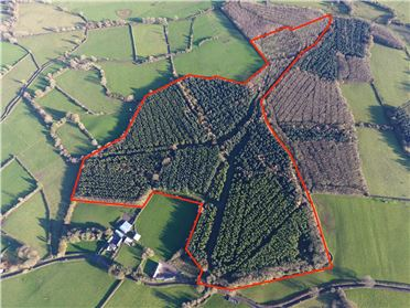 Photo of 40.45 Acres Of Forestry, Moyaliffe & Drombane, Thurles, Co. Tipperary