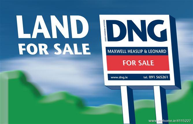 Lands at Newbridge, Ballinasloe, Galway