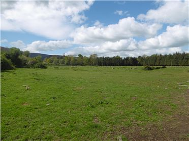 Main image of Circa 11 acre Development Site at Convent Road, Clogheen, Tipperary