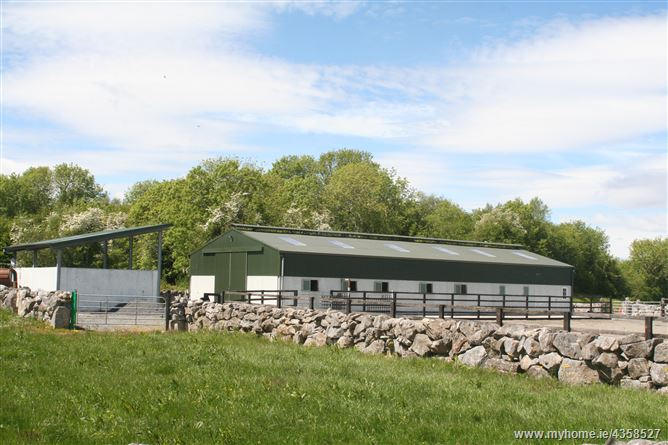 Main image for Callownamuck Equestrian, Rosscahill, Galway