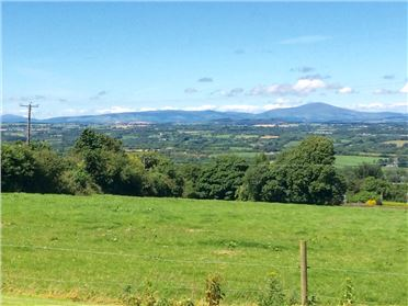 Photo of Ballindinas Hill, Colestown, Barntown, Wexford