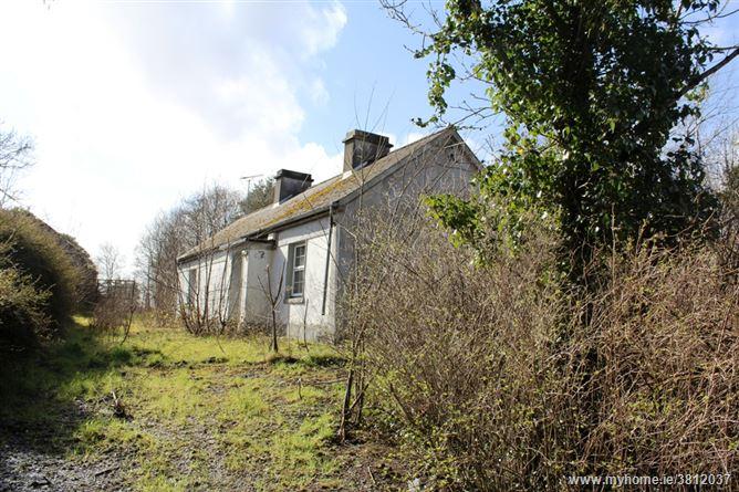 Cornavad, Fenagh, Leitrim