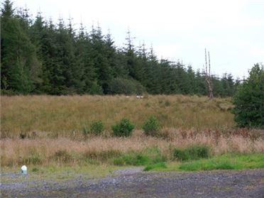 Main image of Sinolane, Kilmovee, Ballaghaderreen, Roscommon