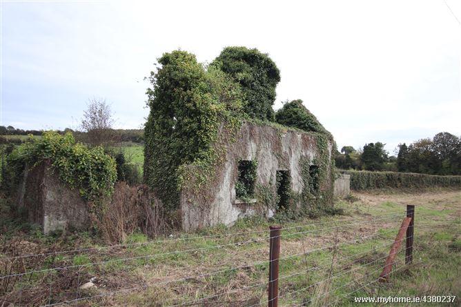 Dublin Airport (DUB) to Kildare - 5 ways to travel via bus, taxi