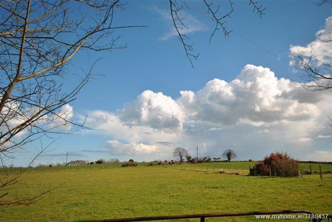 Curclogh Lane, The Ballagh, Wexford