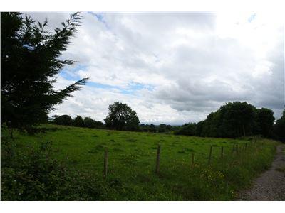 Killuragh, Cappamore, Limerick