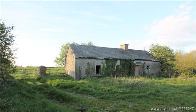 Main image for Lisdonowly, Moyne, Thurles, Tipperary