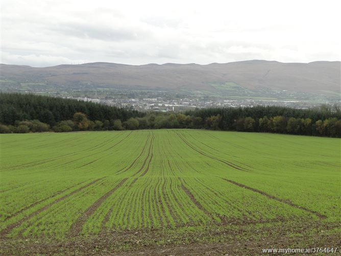 Main image for Listellick, Tralee, Kerry